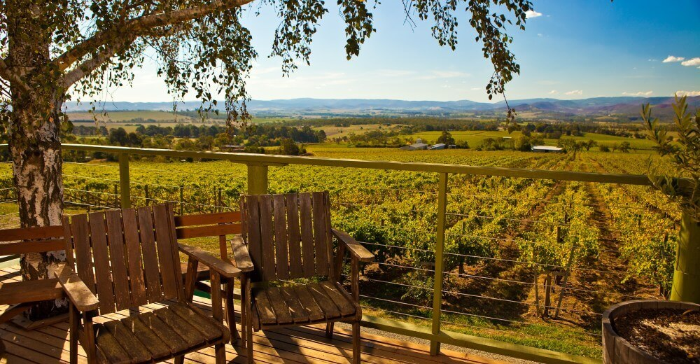 Yarra Valley and High Country View of vineyard from the porch