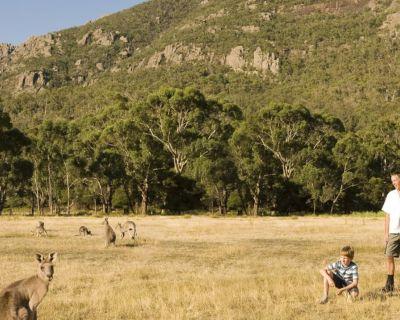 Australian Tourism and Bushfires